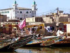 FOSAP 2013 – Il Senegal e i suoi assi nella manica